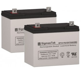Rascal 655 Scooter Replacement Battery (2 Batteries)