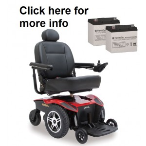 Scooter Store TSS450 Powerchair Replacement Battery (2 Batteries)