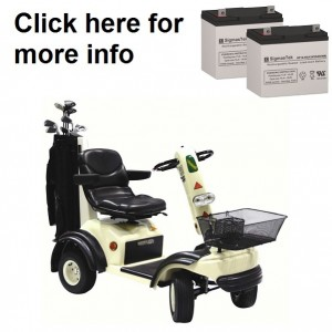 Shoprider GolfRider Scooter Replacement Battery (2 Batteries)