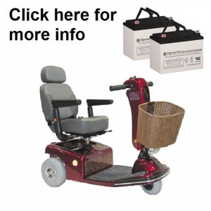 Shoprider Sunrunner 3 and 4 Wheel Scooter Battery (2 Batteries)