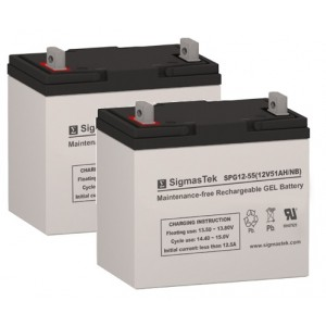 SigmasTek SPG12-55 NF-22 Sealed Lead Acid Gel Battery (2 Batteries)